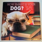 how_smart_is_your_dog